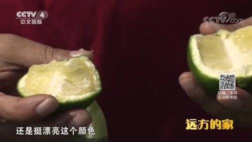 """[远方的家]长江行(46)""""亚洲第一瀑""""——万州大瀑布"""