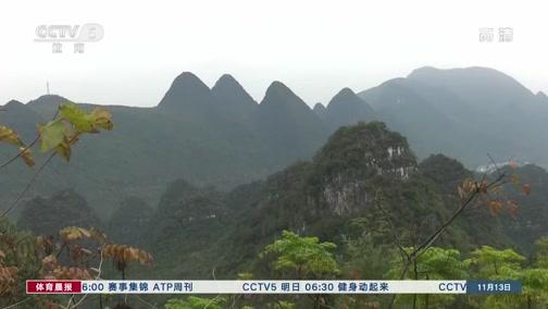 [综合]万峰林国际山地越野跑公开赛举行