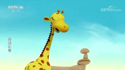 《神童小语》 第69集 给长颈鹿洗澡