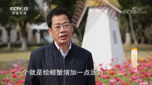 《田间示范秀》 20191116 塘水澄澈秋蟹肥