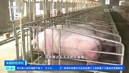 《央视财经评论》 20191123 生猪生产回暖!肉价能稳吗?