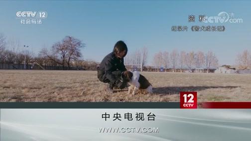 《方圆剧阵》 20200107 警花与警犬·默契搭档(精编版)第一集