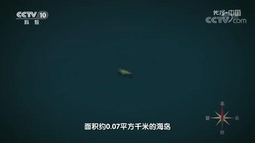 《地理·中国》 20200113 自然胜景·探秘无人岛 上
