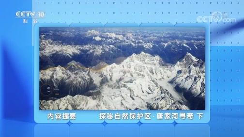 《地理·中国》 20200227 探秘自然保护区·唐家河寻奇 下