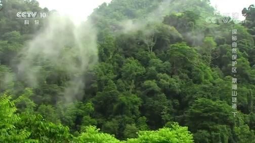 《地理·中国》 20200229 探秘自然保护区·鼎湖山谜迹 下