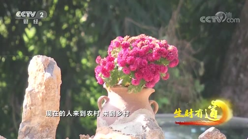 《生财有道》 20200401 云南芒市:风味自然 美食赚钱