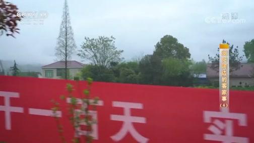 《攻坚日记》 20200605 浏阳河边的客家事(4)