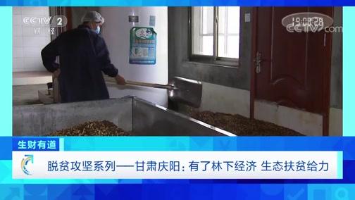 《生财有道》 20200715 脱贫攻坚系列 甘肃庆阳:有了林下经济 生态扶贫给力