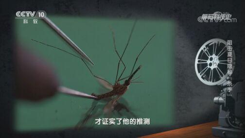 """《解码科技史》 20200808 阻击夏日隐秘""""杀手"""""""