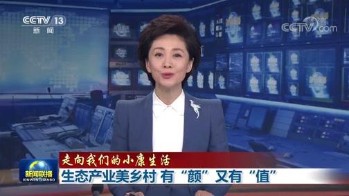 《新闻联播》 20200811 19:00