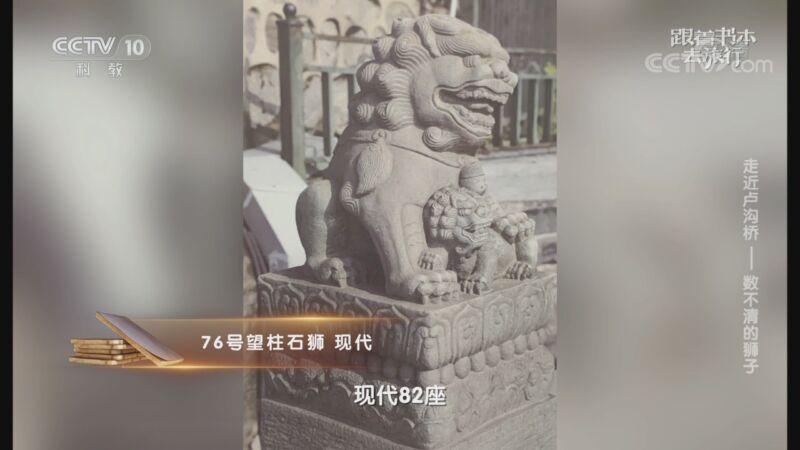 《跟着书本去旅行》 20201027 走近卢沟桥——数不清的狮子