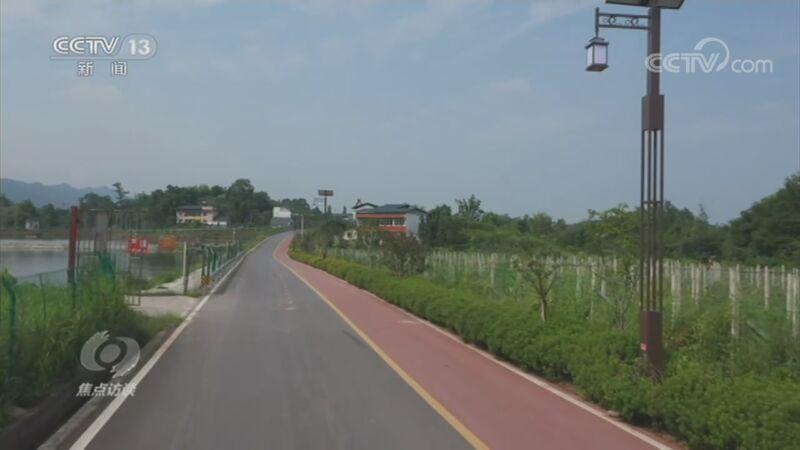 《焦点访谈》 20201119 绿道:乡村振兴之路