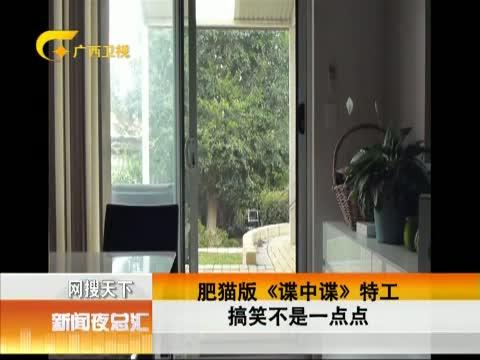 XM专题策划_肥猫间谍爬窗记 00:00:39