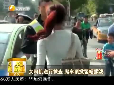 女司机逆行被查 爬车顶掀警帽撒泼