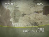 《地理中国》 20150722 新疆好地方·天山三奇