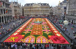 تقع بلجيكا في غرب أوروبا. تحدها كل من ألمانيا واللوكسمبورغ من الشرق، فرنسا من الجنوب والجنوب الغربي، بحر الشمال من الشمال الغربي وهولندا من الشمال. بلجيكا هي إحدى دول البنلوكس
