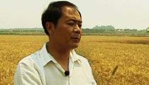 靠保姆式麦收服务赢得财富 年纯利润500万!