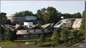 马来亚大学
