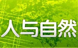 """<br>《人与自然》开播于1994年5月11日。栏目宗旨是""""讴歌生命,关注环境。""""栏目内容定位是介绍动植物和自然知识以及探索人与自然之间的相互影响,相互作用,探讨社会、经济、生态协调发展和可持续性发展的有效途径。<br><br>首播时间: cctv-1 周一至周五13:02"""