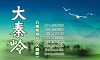 八集电视纪录片《大秦岭》 总撰稿、总导演