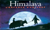<font color=0629fd>《喜马拉雅》(1998年) 人与自然力量之间的抗争</font>