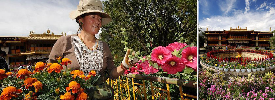 Beautified by flowers ahead of Shoton Festival