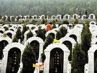 """第118期 小产权公墓""""悄然来袭"""""""