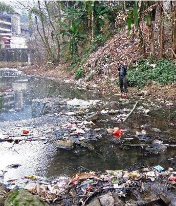 2017关于农村环境污染调查报告