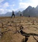 西南大旱推升价格预期 成今年物价新变数