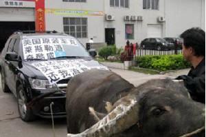 广西车主8800元买牛拉进口车抗议质量问题