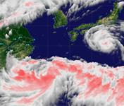<center>点击查看台风动态</center>