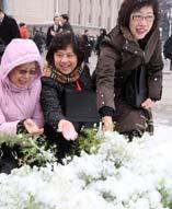 """今天是""""三八""""妇女节,正值十一届全国人大三次会议举行第二次全体大会,北京人民大会堂前白雪飘飘,""""雪舞浪漫""""的女委员、女代表们,成为大会堂前最亮丽的风景。来自澳门的全国人大代表被这美丽的北国风光深深吸引,纷纷嬉雪留影。"""