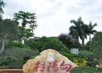 海南省澄迈县向阳村