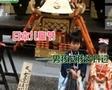 [视频]日本儿童节 男孩女孩分开过