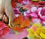 裁剪好的花朵