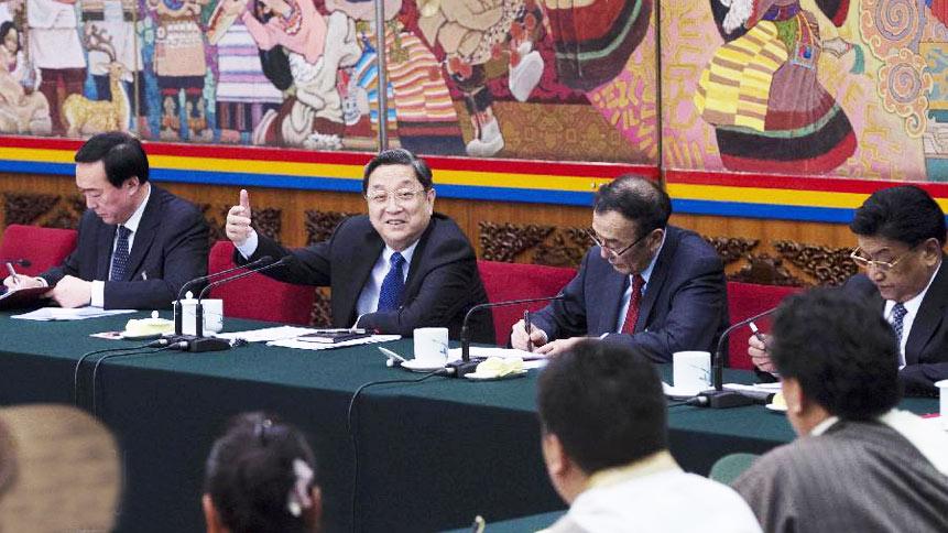 俞正声等分别参加代表团审议