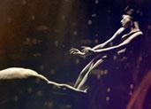 第五届北京国际芭蕾舞暨编舞比赛决赛第二场