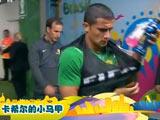 [世界杯]TOP世界杯:澳大利亚卡希尔的小马甲