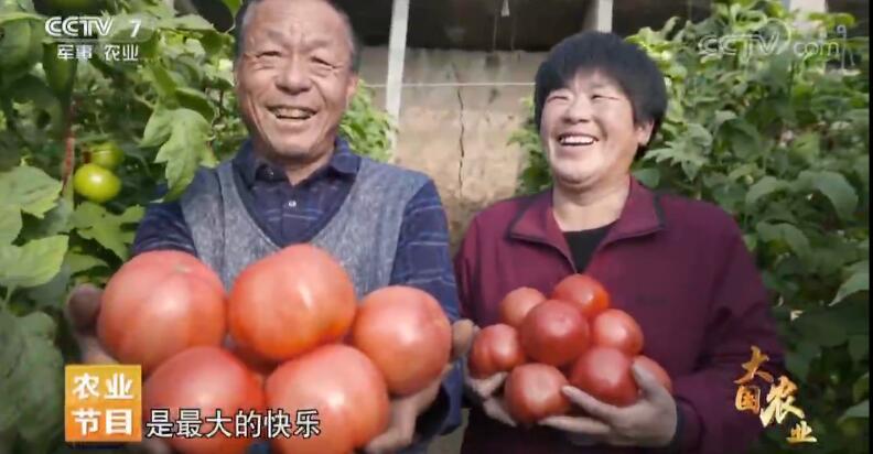 《大国农业》 第五集 创新力量