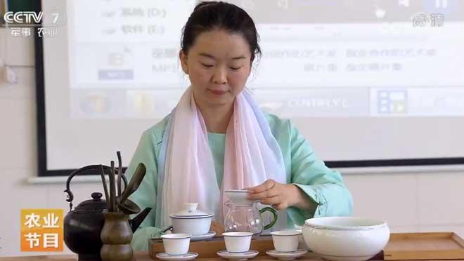 [每日农经]边陲小镇 茶树飘香 20190711