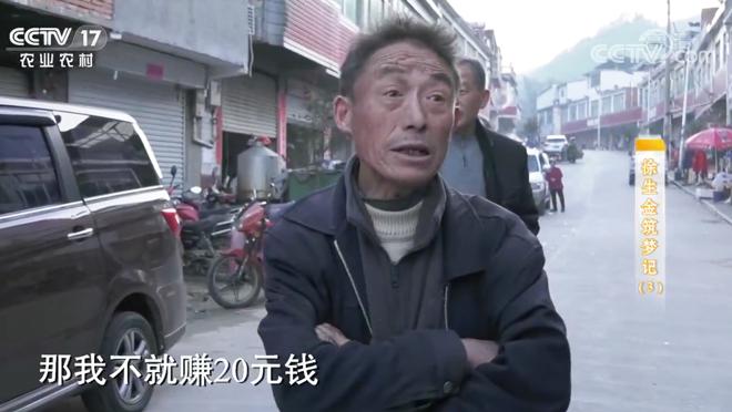 《攻坚日记》 20200418 徐生金筑梦记(3)