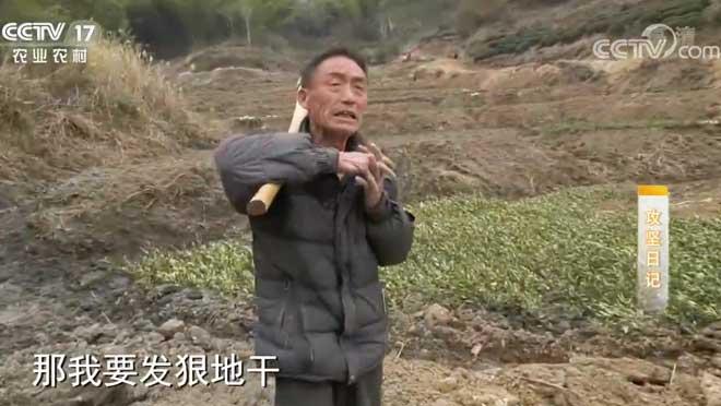 《攻坚日记》 20200711 徐生金筑梦记(4)