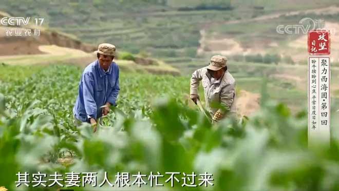 《攻坚日记》 20200927 聚力西海固(4)