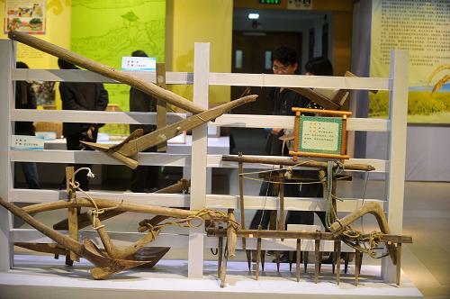 农耕文化展上展出的各种梨和耙(12月1日摄)。新华社记者 黄孝邦 摄