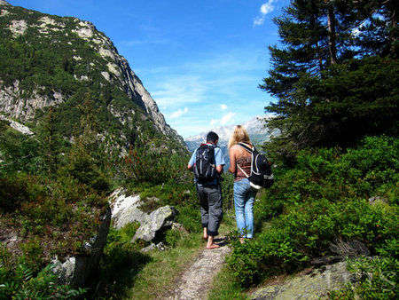 瑞士少女峰:跟我去徒步,光脚采蓝莓