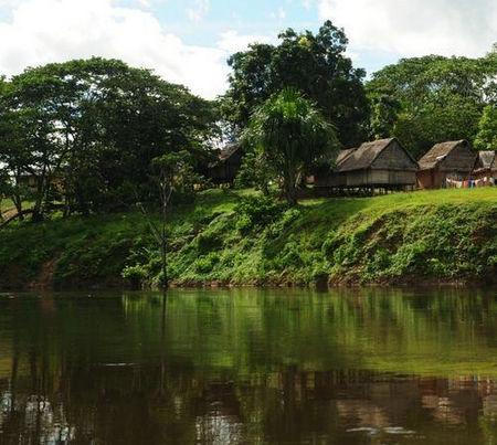 蛇王毒蛙裸体部落 探寻亚马逊的狂野本色