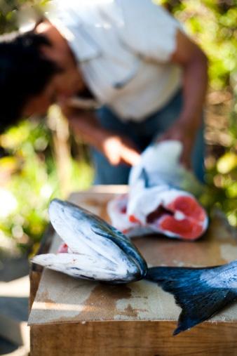吃鱼防哮喘
