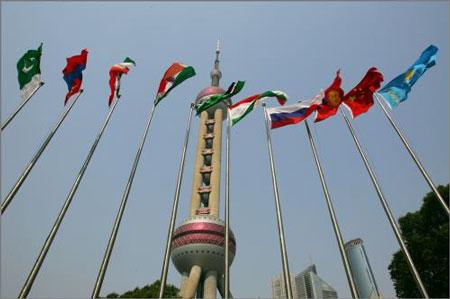 上海合作组织所有成员国的旗帜在上海国际会议中心广场前飘扬。