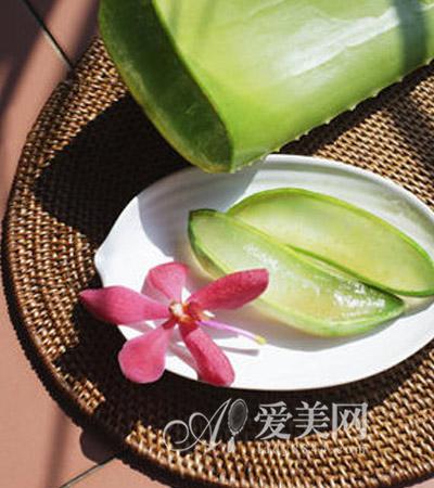 夏季5款芦荟减肥食谱 改善肠胃除便秘又美容