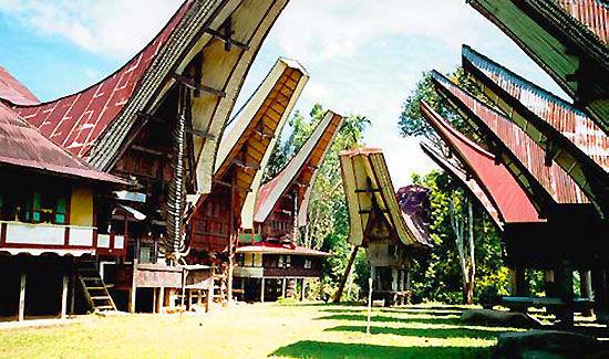 印度尼西亚塔纳托拉雅